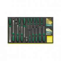 Stahlwille 96831196 Screwdriver set TCS 4622/4650+10760+10766, 36pcs.